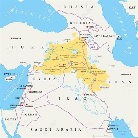 fighting form   party  kurdistan infoshop news