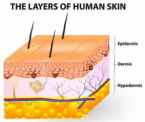 Can A Skin