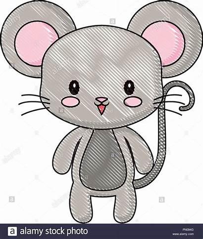 Mouse Cartoon Drawing Animal Maus Alamy Comp