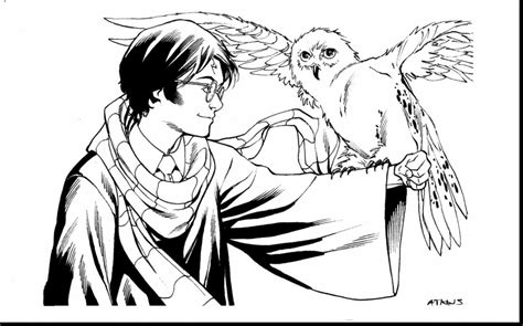 Harry Potter Owl Coloring Pages Collection