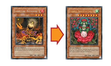 yugioh prophecy deck tips yu gi oh trading card 187 ancient prophecy koa ki