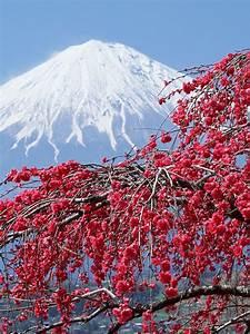 Free, Download, In, Japan, Japan, Sakura, Mountains, Wallpaper, Background, 4k, Ultra, Hd, 3840x2160, For