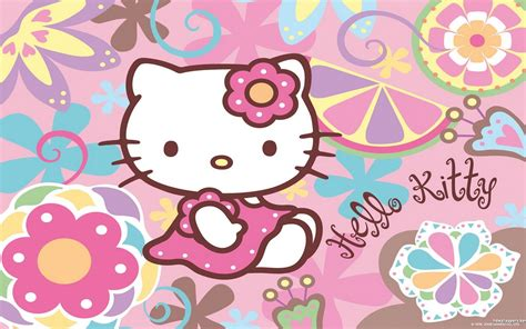 kitty wallpaper  computer wallpapertag