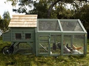 Chicken Coop Designs For Backyard Chickens