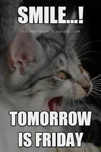 Funny Thursday ... Tomorrow Funny Quotes