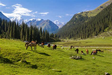 kyrgyzstan vast steppes  harsh mountains travelmynecom