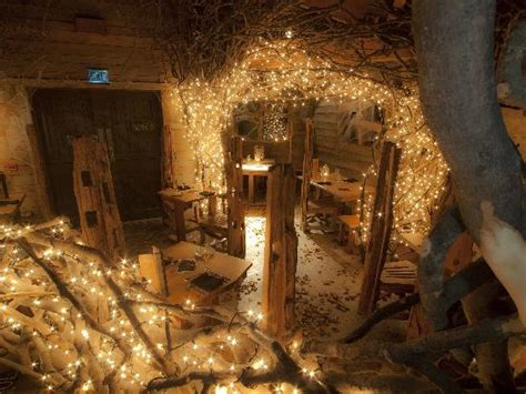All Lit Up.-picture Of The Treehouse Restaurant At The