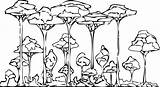 Rainforest Coloring Pages Printable Trees Forest Drawing Animals Rain Clipart African Layers Colouring Simple Getdrawings Library sketch template