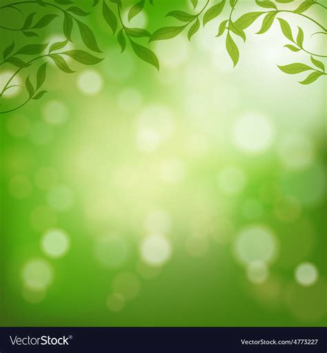 Fresh Backgorund by Fresh Green Leaves On Background Vector Image