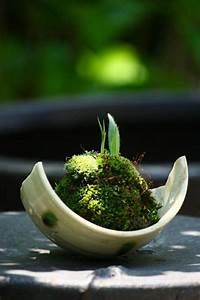 Zen Garten Miniatur : die besten 25 zen garten mini ideen auf pinterest miniatur zengarten zen g rten und mini bonsai ~ A.2002-acura-tl-radio.info Haus und Dekorationen