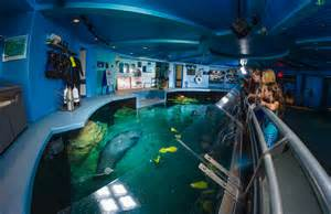 Disney World Epcot Living Seas
