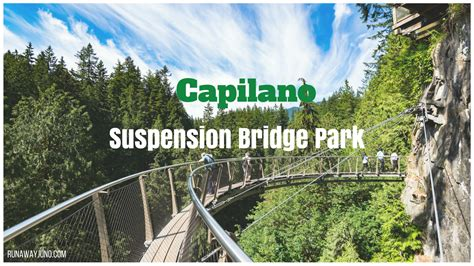 Capilano Suspension Bridge Park Vancouvers Playground