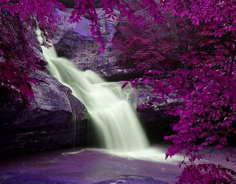 hd cool beautiful water purple landscape wallpaper and background image 1280x998 id