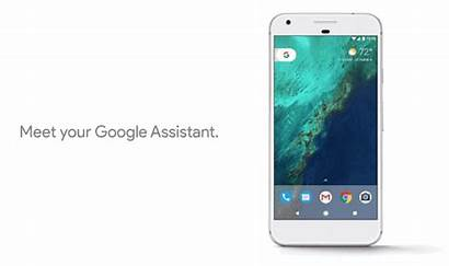 Pixel Google Xl Assistant Phone Release Date
