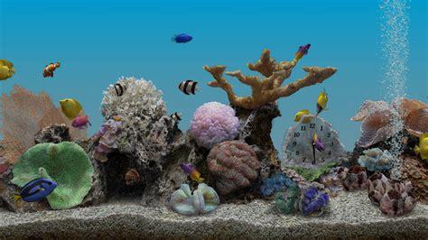 marine aquarium 3 2 android apps on play