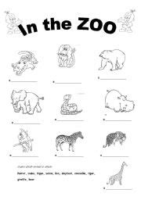 animals   zoo esl worksheet  zapja