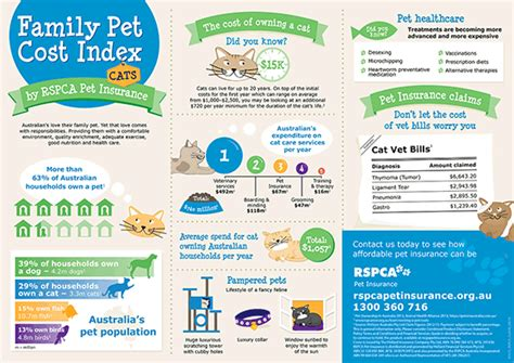 Last updated january 13, 2021. The cost of owning a cat in Australia: http://www.rspcapetinsurance.org.au/pet-care/responsible ...