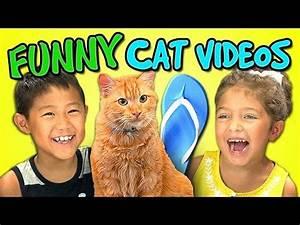 Kids React Bonu... Funny Cat Videos