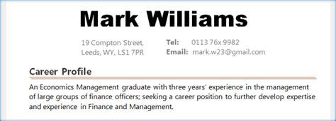 exle of a career summary or a career profile on a cv