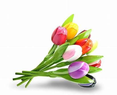 Tulip Bouquet Tulpen Dutch Wooden Houten Multicolor