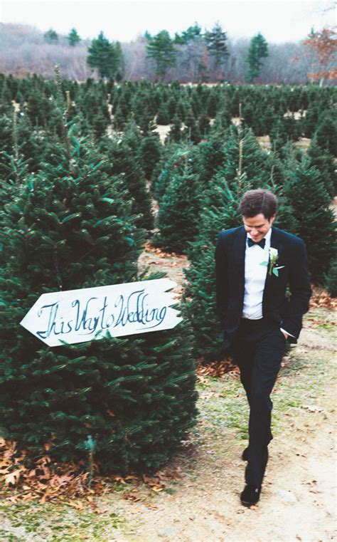 rhode island christmas tree farm this tree farm wedding looks like a fairytale come true bored panda
