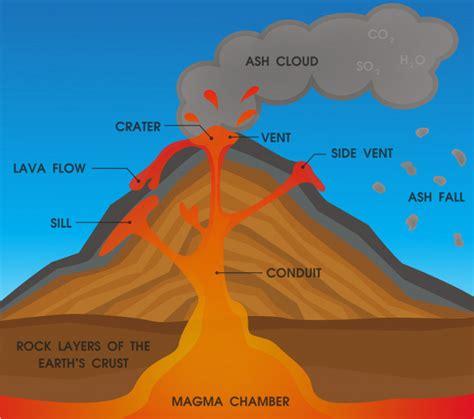 Volcano Anatomy Diagram Vector Premium Download