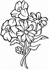 Gorget Coloring Template Forgetmenot sketch template