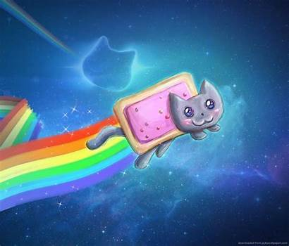 Cat Nyan Rainbow Galaxy Cool Backgrounds Cats