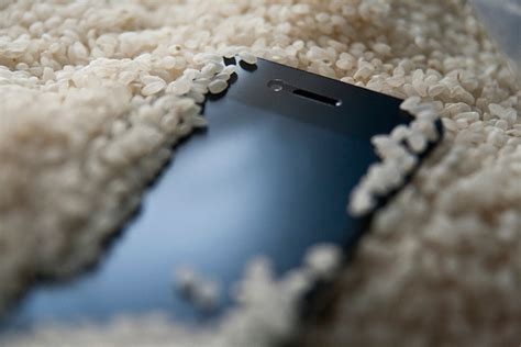 how do you leave your iphone in rice what really works for a iphone pro guide gadget pros