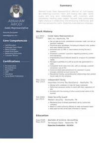 resume of inside sales representative inside sales resume sles visualcv resume sles database