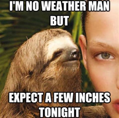 Sexy Sloth Meme - seductive sloth