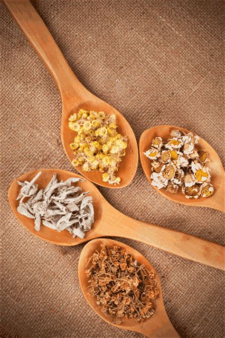 cuisine ayurvedique equilibrer pitta fortuitudes