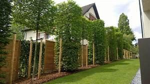 Garten Sichtschutz Modern : sichtschutz im garten modern gartengestaltung 107 bilder ~ Michelbontemps.com Haus und Dekorationen