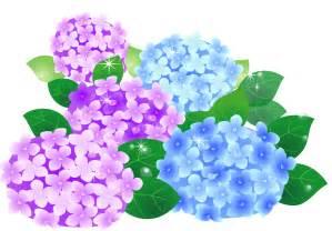 紫陽花のイラスト 無料 に対する画像結果