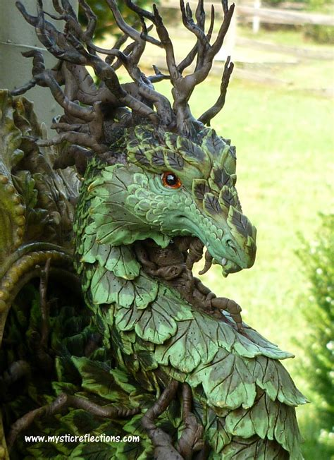 mystic reflections     forest dragon