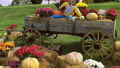 Harvest Autumn Fall Wallpapers Desktop Background Backgrounds