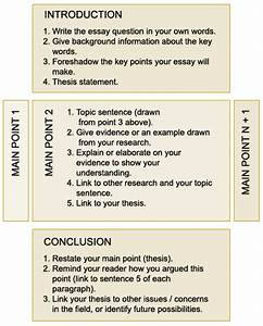 Structuring Essays   Current Students   The University Of