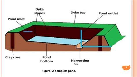 pond construction