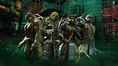 Ninja Turtles Mutant Teenage Raphael Michelangelo Leonardo