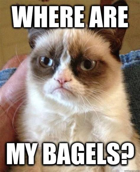 Bagel Meme - 225 best bagels bites menu images on pinterest bagel bites brighton and website