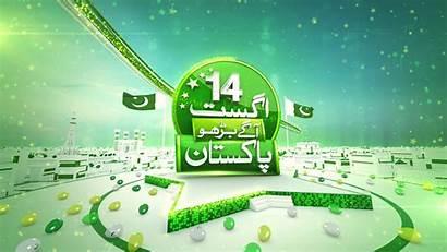 August Behance Pakistan
