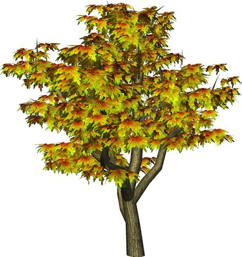 flower tree cliparts   clip art