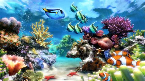3d Animated Fish Wallpaper - 3d fish tank wallpaper 59 images