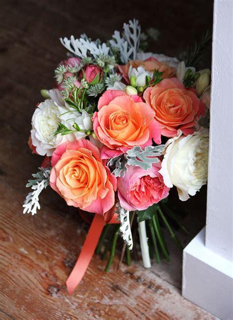 piggy rose david austin patience  romantic antike
