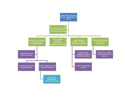 organizational chart template word playbestonlinegames