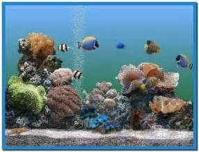 Free 3D Animated Aquarium Screensaver