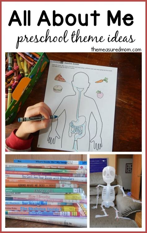 all about my school preschool theme all about me fabulous science activities from our time 110