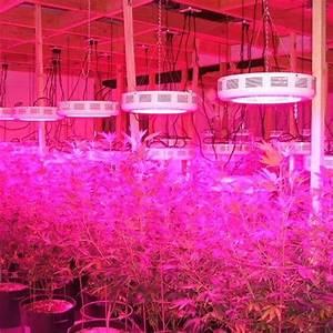 Lampen Für Pflanzen : 135w led pflanzenleuchte wachstum grow lamp wuchs pflanze lampe gew chshaus uv ~ A.2002-acura-tl-radio.info Haus und Dekorationen