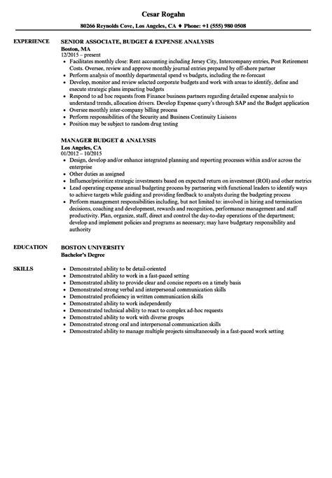 assistant treasurer resume sles velvet customer service