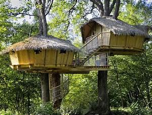 Constructeur Cabane Dans Les Arbres : cabanes perch es dans les arbres ~ Dallasstarsshop.com Idées de Décoration